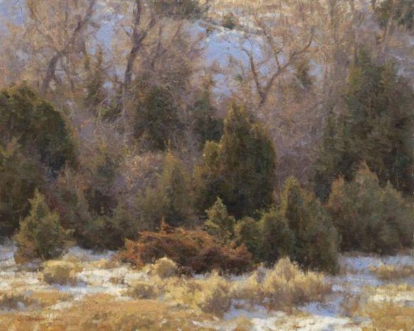 BL_3352 aspevig_novembers junipers